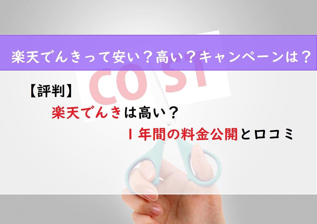 【評判】楽天でんきは高い?1年間の料金公開と口コミ